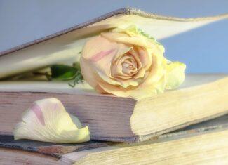 Kiedy czytanie książek przestaje być pasją, a staje się uzależnieniem